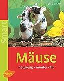 Mäuse: Neugierig - munter - fit (Smart Tierbuch)