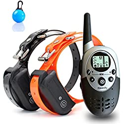 Havenfly Collar de Adiestramiento para Perros à Distance pour Chiens Avec bip, Vibration et lumière, Rechargeables et imperméable à l'eau e-Collier Formateur pour 2 Chiens
