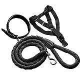Verstellbare Hundeleine Hundegeschirr Halsband mit Leine Erziehung Set für Chihuahua mittlere und große Hunde (Schwarz)