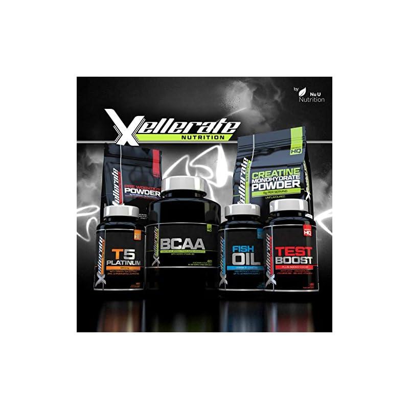 Pre Workout Powder Supplement 450g | 56 Servings Berry Blast with Creatine, Beta-Alanine, Taurine, L-Glutamine…