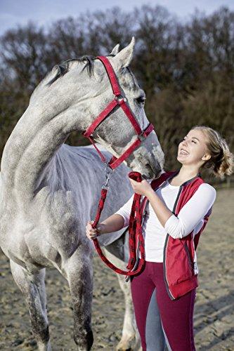 HKM Halfter -Bibi&Tina Star-, weich unterlegt Sattel- & Zaumzeug, rot, One Size