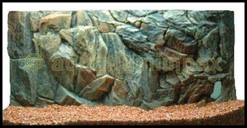 3D Aquarien Rückwand 60x30 Fels mit Wurzel
