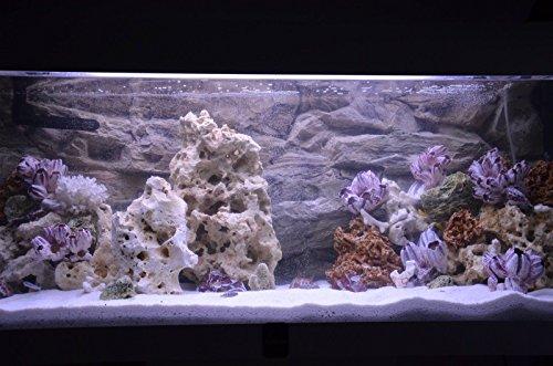 TM Aquatix Aquarium Rock Decoration Fish Tank Stone Ideal for Malawi Cichlid (20kg, Red) 3