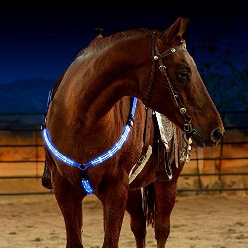 """Illumiseen LED-Pferdegeschirr, über USB wiederaufladbar, Beste Sichtbarkeit beim Reiten, verstellbare, robuste und komfortable \""""Hi-Viz\""""-Sicherheitsausrüstung für EIN sichtbares Pferd"""