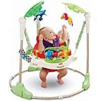 Fisher-Price K6070 Rainforest Jumperoo