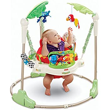 fisher price laugh and learn jumperoo manual
