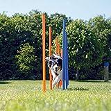 Trixie 3206 Dog Activity Agility Slalom, 115 × ø 3 cm, blau/orange