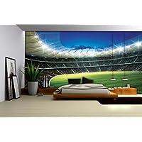 Disney Licence 323P8 Stade Football Sport Papier Peint Décoration Murale Multicolore 368,0 x 254,0 cm