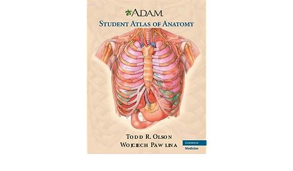 Buy Adam Student Atlas Of Anatomy 0 Mps Siam Series On