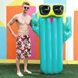 Best Pool Loungers - Splosh Deluxe Cactus Pool Lounger Review
