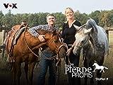 Die Pferdeprofis (Staffel 9)