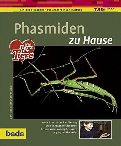 Phasmiden zu Hause