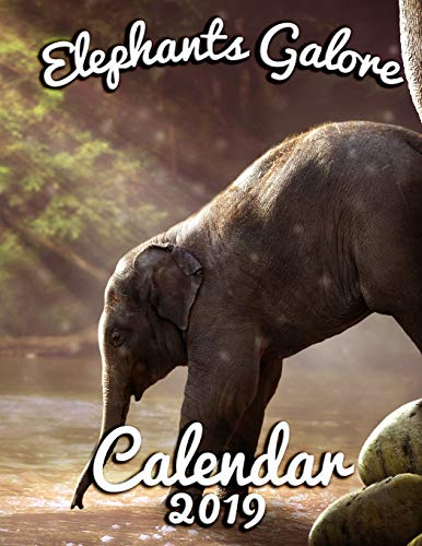 Elephants Galore 2019 Calendar: Pachyderms, Both Adult and Babies for an Entire Year! Jumbo-herd