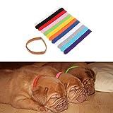Yoli beweglich Halskette ID Identifikation Welpen verstellbar Band selbstklebend für Hunde Katze Halskette Identifizierung Hunde Halskette Identität Katze