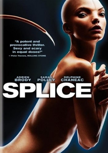 splice-import-belge