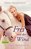 Frei wie der Wind 1: Kayas Pferdesommer - Gaby Hauptmann