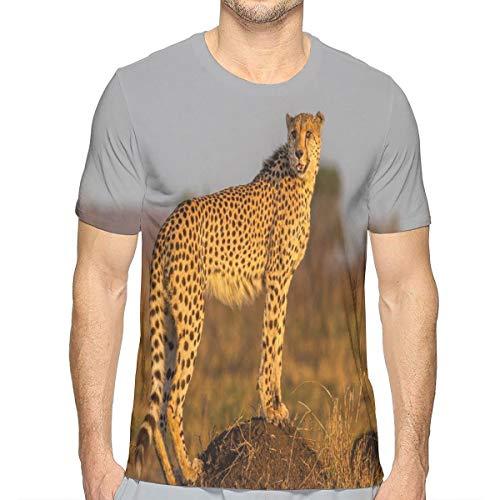 3D Printed T Shirts,African Wild Animal Cheetah Standing On Termite Mound Savannah Nature View XXL