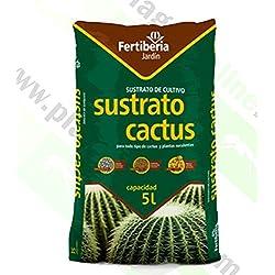 Sustrato para cactus interior y exterior