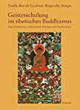Geistesschulung im tibetischen Buddhismus: Eine Einführung, vorbereitende Übungen und Meditationen