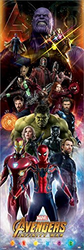 rs Avengers Infinity War Characters Türposter 53 x 158 cm ()