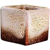 wicemoon macetero cuadrado Simple de cerámica multicolor Mini multi-meat pulgar lavabo 1pieza (blanco)