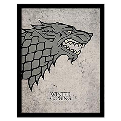 Pyramid International Game of Thrones (Stark) Framed Print Memorabilia, Multi-Colour, 30 x 40 x 1.3 cm