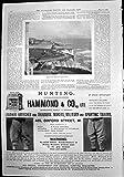 Stampa Broadstairs dal Grande Hotel Hammond & dalle Culatte 1899 del Cuoio di Co
