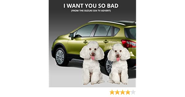 I Want You So Bad (From The Suzuki SX4 TV Advert) - Single by James
