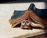 Eule unter Buch Original Skulptur Dekoration Garten Briefbeschwerer Ornament Natur Natur Elfen elf Magico Magic