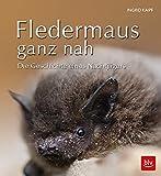 Fledermaus ganz nah: Die Geschichte eines Nachtjägers (BLV)