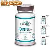 DOG FIT by PreThis® Joints Large, medium & small | Hochwertiges Gelenkmittel für Hunde | Bei Gelenkschmerzen & Arthrose | 3 Größen für jedes Hundegewicht | Gelenknährstoffe | ISO Zertifiziert!
