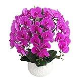 Calcifer 6PCS (9Blütenköpfe/PCs) 100cm Künstliche echtes Touch Latex Phalaenopsis-Orchidee Vorbau Blumensträuße Künstliche Blumen für Hochzeit Party Home Garten Dekoration, violett, 100 cm