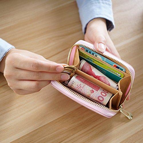 La signorina Bao Qian donna portafoglio breve paragrafo Portafoglio carta studenti pacchetto Mini Coin Purse Zipper Bag ( colore : Nero ) Nero