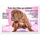 personalisierte Einladungen für Geburtstag bestandene Prüfung Silvester - eigener Text Hund im Bett rosafarbend süss, 90 Karten - 21 x 14,8 cm DIN A5