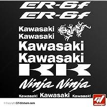 Stickers KAWASAKI ER-6F-blanco-Tabla de 14 unidades, adhesivos, autoadhesivos, ER 6F, ER6F ER6, F, ER6-F