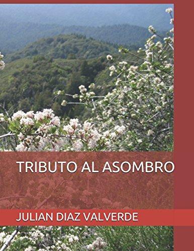 TRIBUTO AL ASOMBRO por JULIAN DIAZ VALVERDE