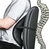 TaoNaisi Cool Vent Mesh Back Lumbar Support para silla de oficina, coche y otros