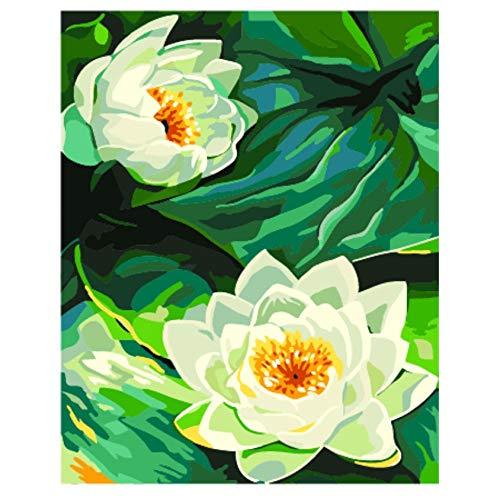 Hyllbb Rahmenloses Neues Einzigartiges Geschenk Der Ankunft Digital-Ölgemälde Auf Segeltuchmalerei Durch Dekoratives Bild Lotus Flower Der Zahlen-40 * 50Cm,With Frame (Lotus Flower-bild)