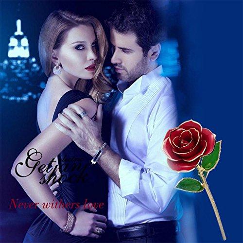24K Gold Rose Blume, ICOCO echte Rose mit echten Geen Blatt in Geschenkbox mit klarem Display Stand beste Geschenk für alle wichtigen Tage