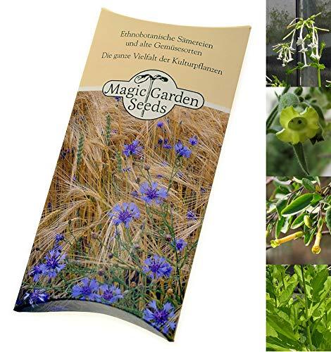Ritueller Rauchtabak Samen-Geschenkset mit 4 traditionellen Tabaksorten der indigenen Völker Nordamerikas