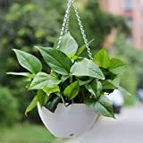 #9: Airex Plastic Flower Plant Hanging Pot Chain Basket for Balcony Indoor/Outdoor Decoration (Multicolour)