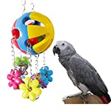 Parrot Chew