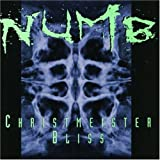 Songtexte von Numb - Christmeister Bliss