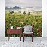 Bilderwelten Vliestapete Premium - Toskana Frühling - Fototapete Quadrat Vlies Tapete Wandtapete Wandbild Foto, Größe HxB: 240cm x 240cm