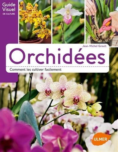 Orchides - Comment les cultiver facilement