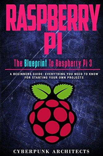 Raspberry Pi: The Blueprint to Raspberry Pi (Cyberpunk Blueprint Series)