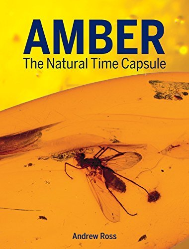 Amber: The Natural Time Capsule by Andrew Ross (2016-09-01)