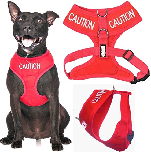 caution-do-not-approach-red-colour-coded-non-pull-front-and-back-d-ring-padded-and-waterproof-vest-d