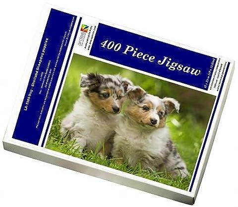 Photo Jigsaw Puzzle of LA-5989 Dog - Shetland Sheepdog puppies