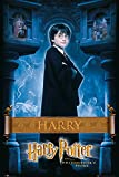 GB Eye 61 x 91,5 cm Harry Harry Potter 1 Maxi Poster, mehrfarbig